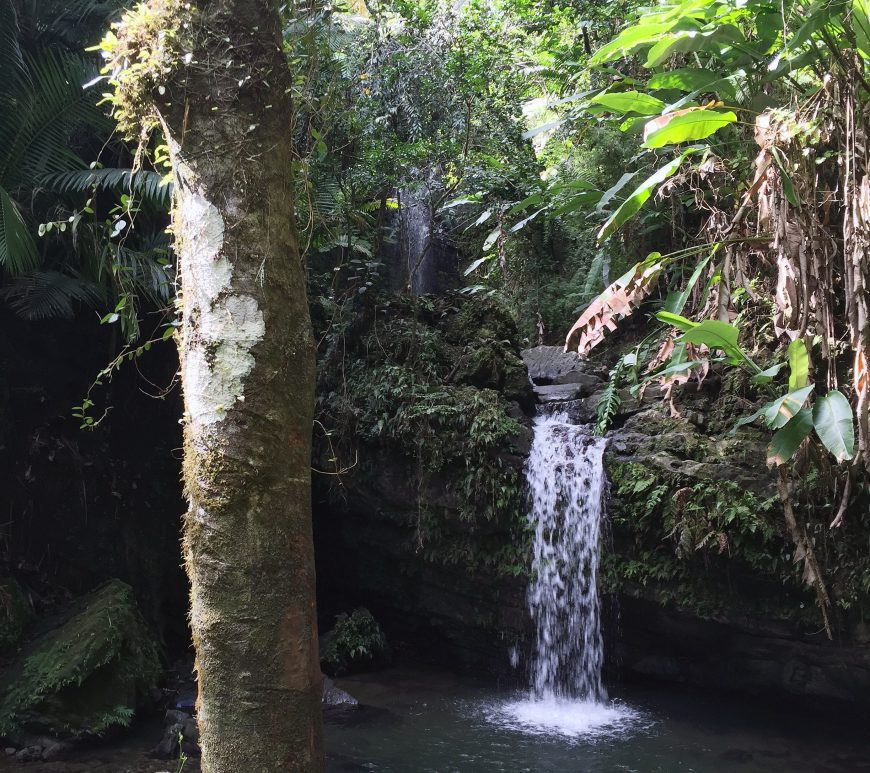 el-yunque-waterfall
