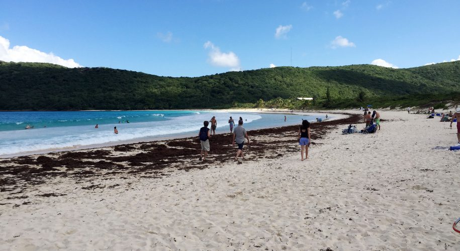 flameco-beach-culebra